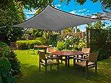 Sunnylaxx Vela de Sombra Rectangular 2.5 x 3 Metros, toldo Resistente y Transpirable,...
